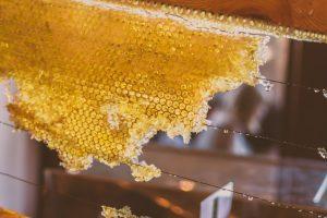 Des abeilles ou du sucre ?