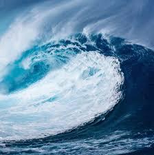 """""""Les océans s'élèvent, nous aussi !"""""""