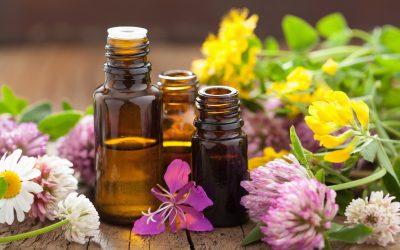 Les huiles essentielles BIO: utiles au jardin et à la maison