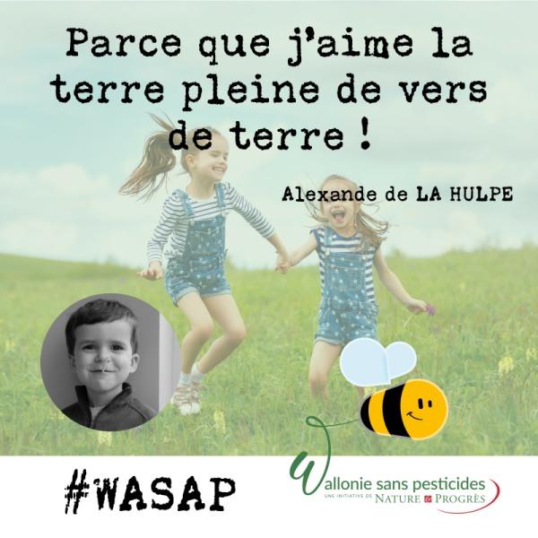 #WASAP_témoignage_réseaux_Alexandre