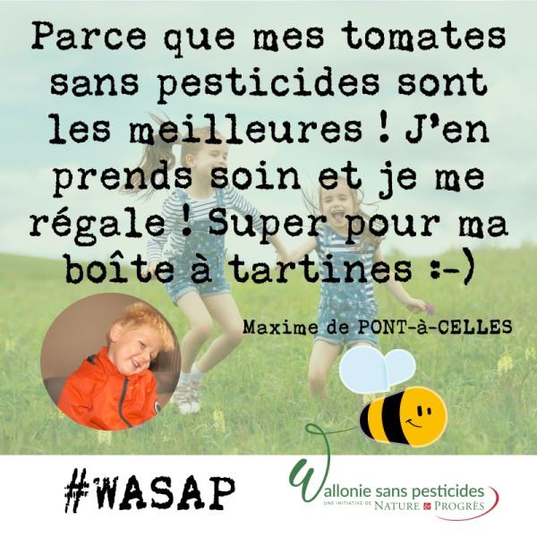 #WASAP_témoignage_réseaux_Maxime