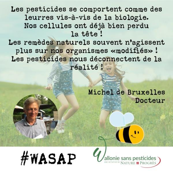 #WASAP_témoignage_réseaux_Michel