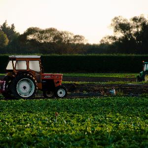 Faillite sanitaire du système agricole intensif
