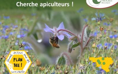 Nature & Progrès recherche des apiculteurs pour mettre des ruches sur ses parcelles Plan Bee
