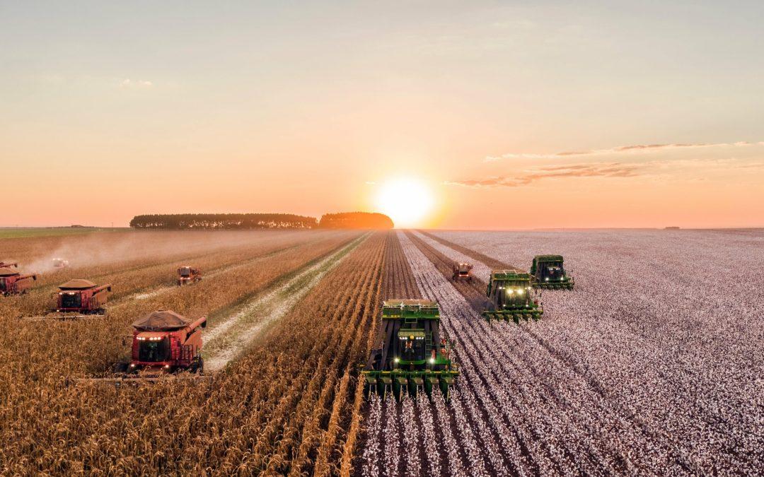 La société civile européenne veut protéger la santé et l'environnement contre les pesticides