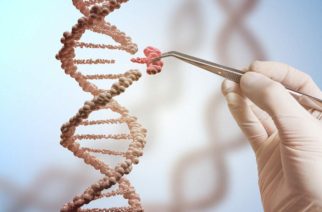 L'Autriche se prononce sur les nouveaux OGM. Et la Belgique ?