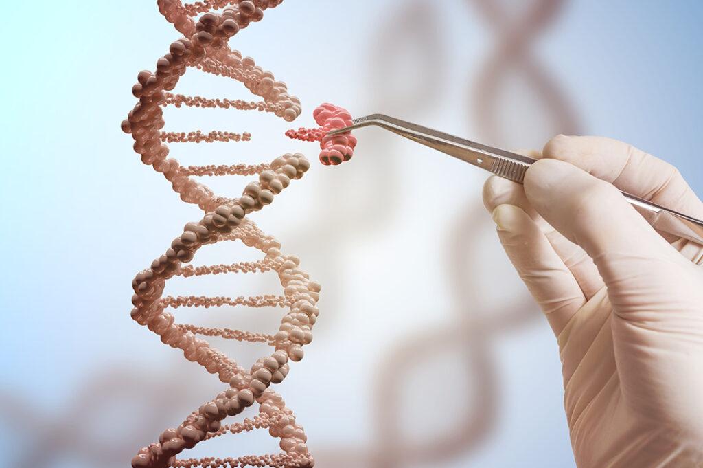 Visuel nouveaux OGM