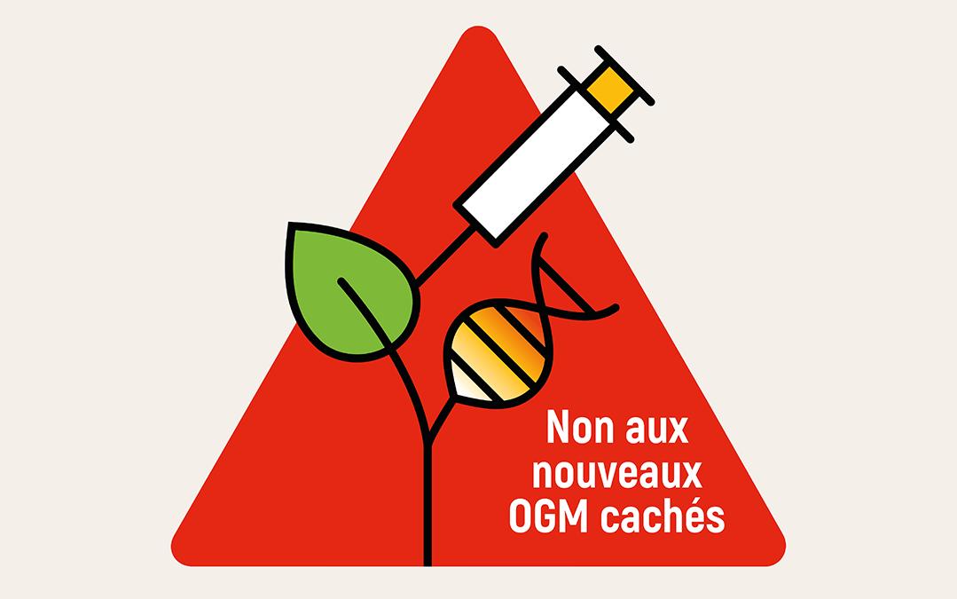 Feu vert en Europe pour les nouveaux OGM ?