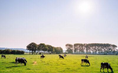 Les nouveaux OGM : une question citoyenne