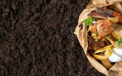 Créer son compost : un acte écologique et économique
